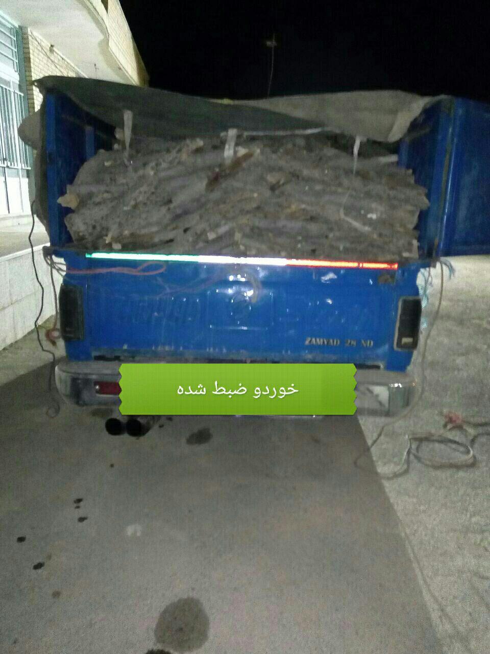 دستگيري سه متخلف قاچاق چوب در شهرستان سميرم